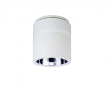 Green Surface Mounted Downlight